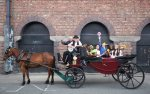 Liberties Festival Photocall 10.06.11_Carriage with Horse